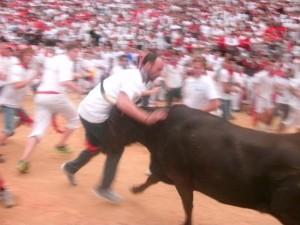 guy hit by bull spain