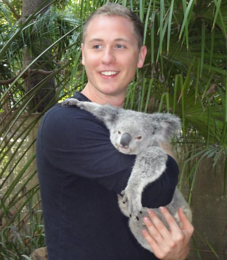 Koala Pic