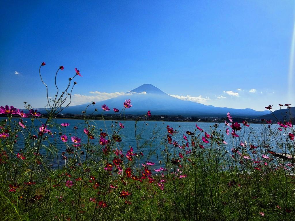 Fuji Mountain, Japan, lake kawaguchi