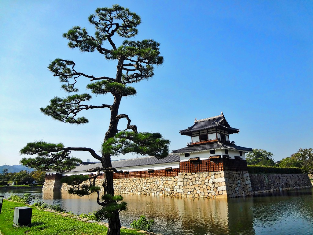 Hiroshima castle and tree 10MB