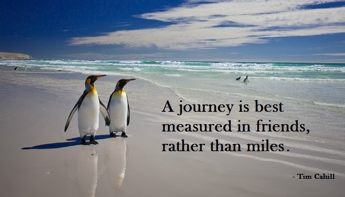travel quote penguins